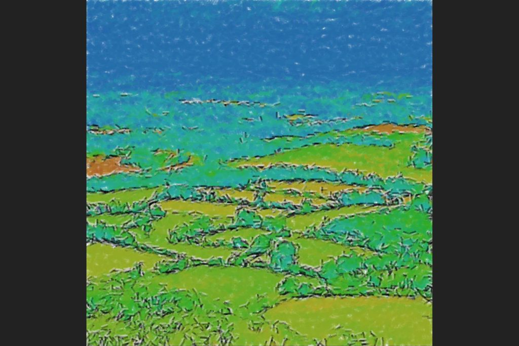 Algorithm-painting_fields