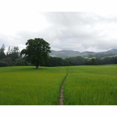 Landscapes – Pitlochry, Scotland (2016)